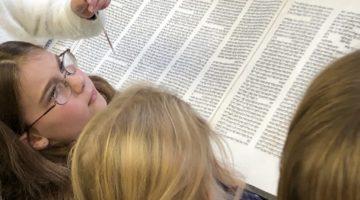 Torah Feather Kids (2)